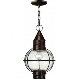 Lighting Hinkley HK/CAPECOD8/L Cape Cod 1 Light Outdoor Lantern Bronze