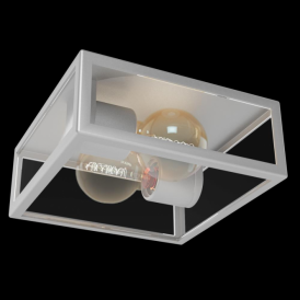 94828 Alamonte 2 Light IP44 Ceiling Light Stainless Steel