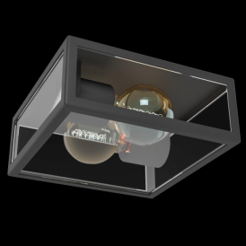 94832 Alamonte1 2 Light IP44 Ceiling Light Black